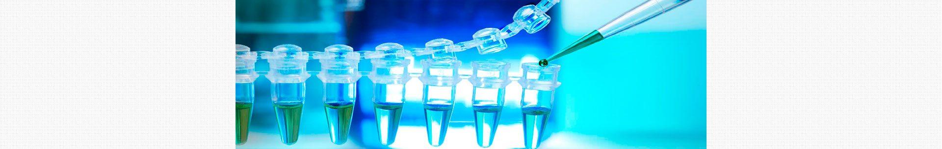 industria farmaceutica y quimica