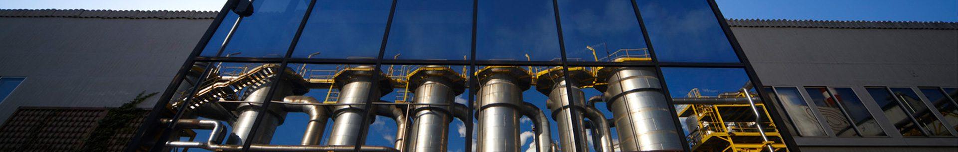 biomasa España